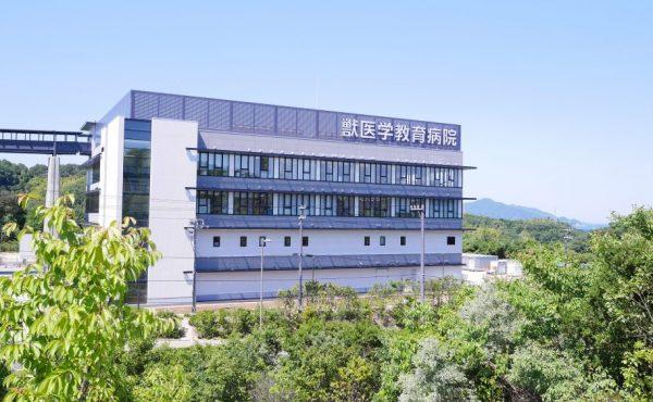 大学 岡山 学部 理科 獣医